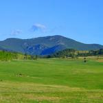 Elk Meadow Evergreen, CO