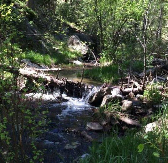Land for sale conifer co