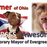 Mayor of Evergreen