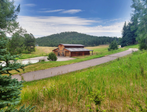 Homes Over 10 Acres in The Denver Foothills