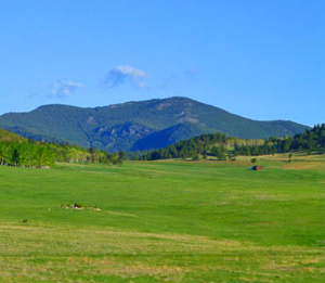 Elk Meadow Evergreen, CO