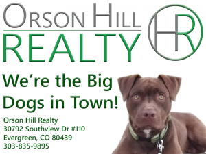 Orson Hill Realty Listing Agents