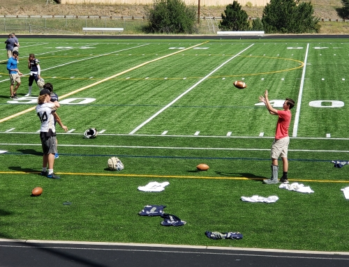 Evergreen High School Football – Schedule and Updates – Cougars
