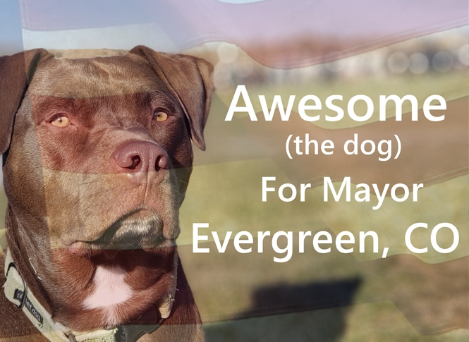 Mayor of Evergreen