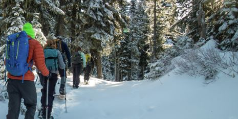 Women's Introduction to Colorado Snowshoeing